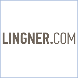 LINGNER CONSULTING NEW MEDIA GMBH
